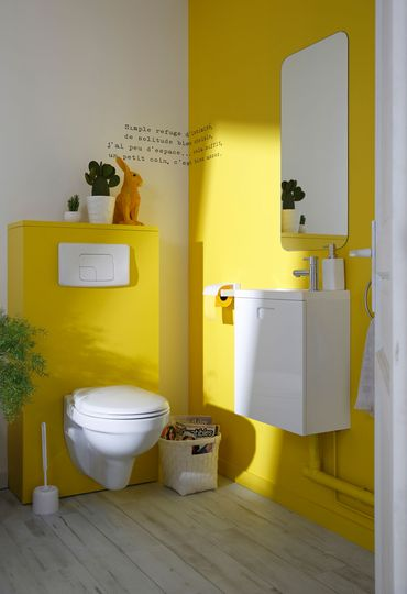 D co toilettes peinture for Peinture toilettes idee